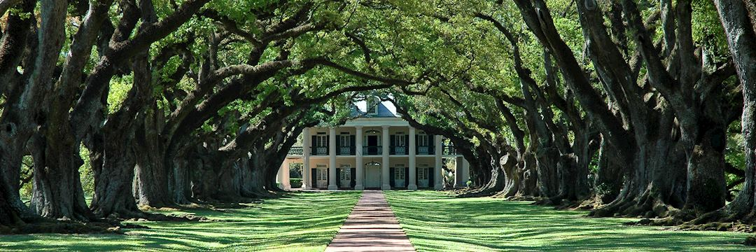 Plantation Homes Of The Deep South