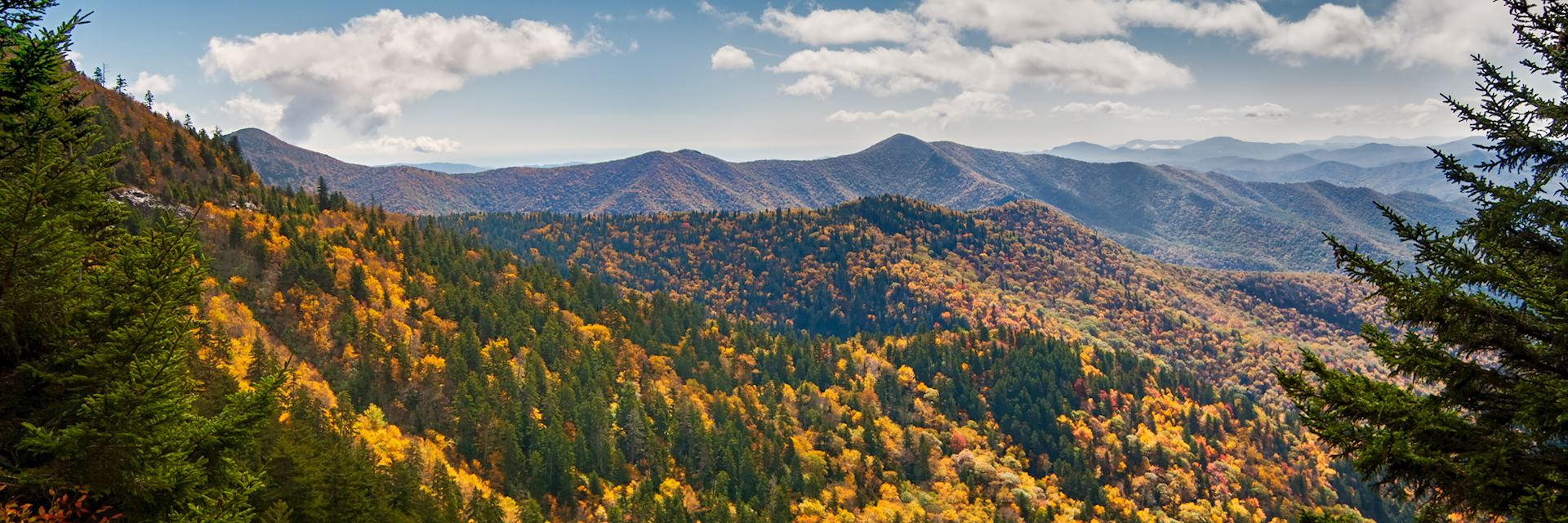 Mountains above the Blue Ridge Parkway