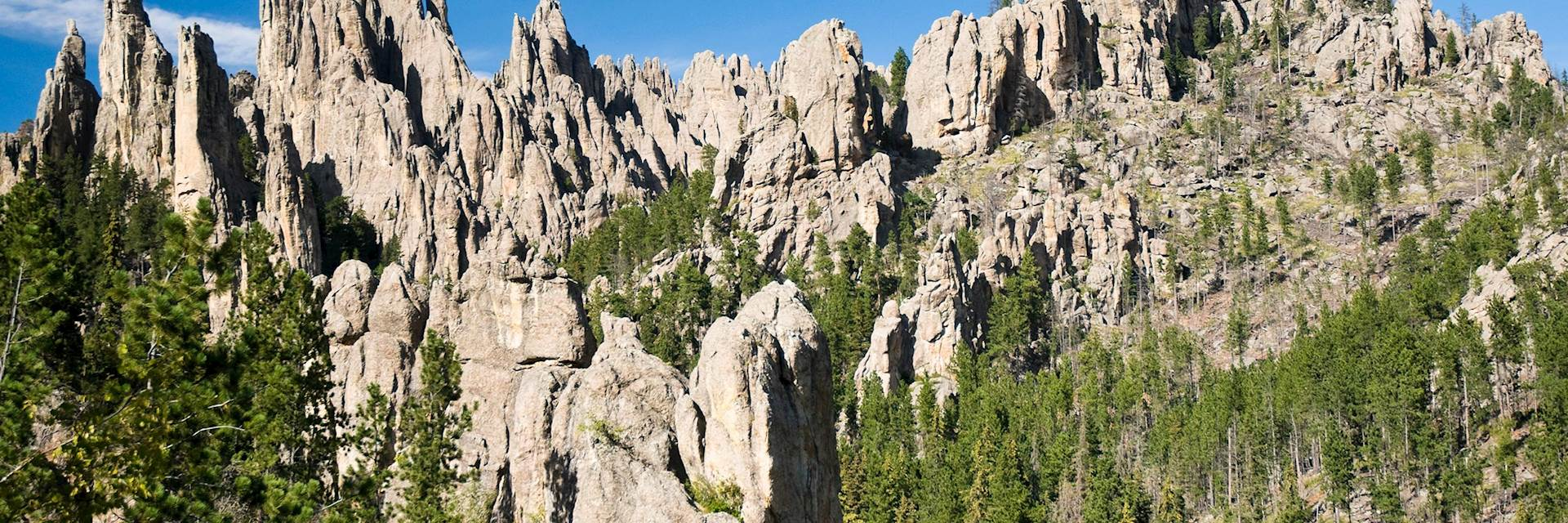 Custer State Park, the USA
