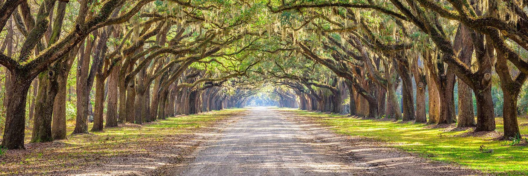 When is the best time to visit the Deep South?