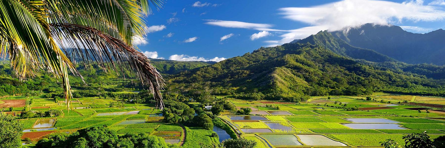 Visit Kauai, Hawaii