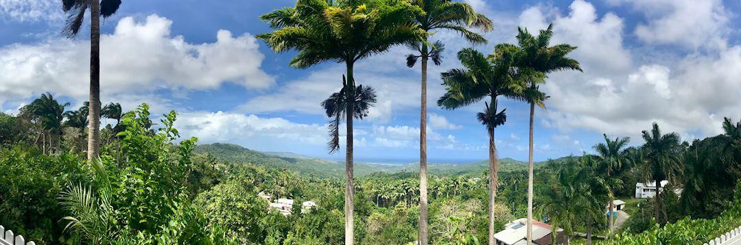 Saint Thomas Parish, Barbados