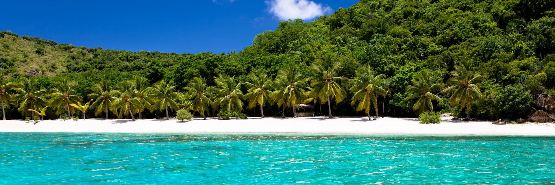 Guana Island beach