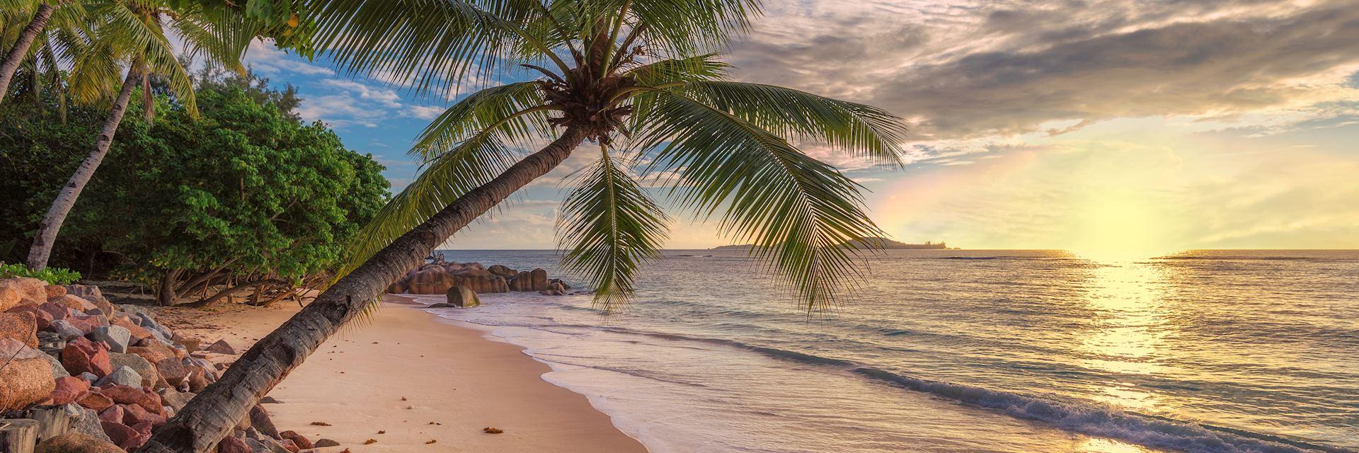 Beach in Jamaica, Caribbean