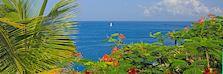 iStock_65947229 St Lucia scenery_2400x800