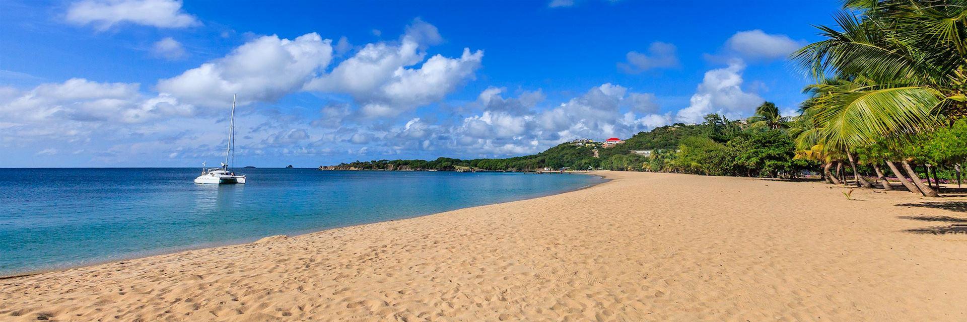 Grenadines Saline Bay, Mayreau Island