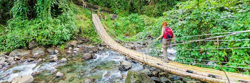 Crossing a bamboo bridge, St Vincent and the Grenadines
