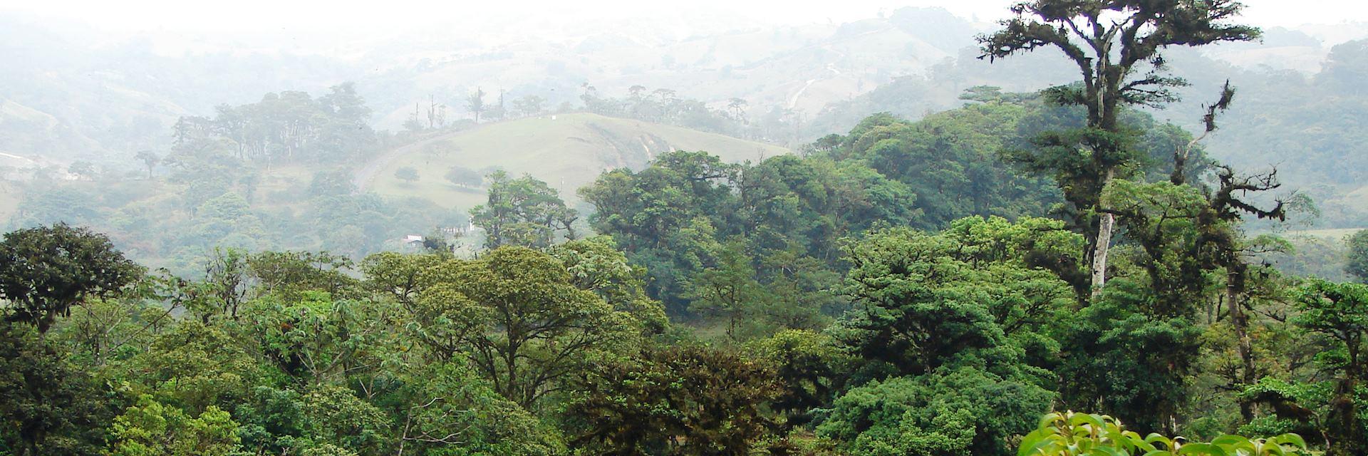 San Ramón countryside