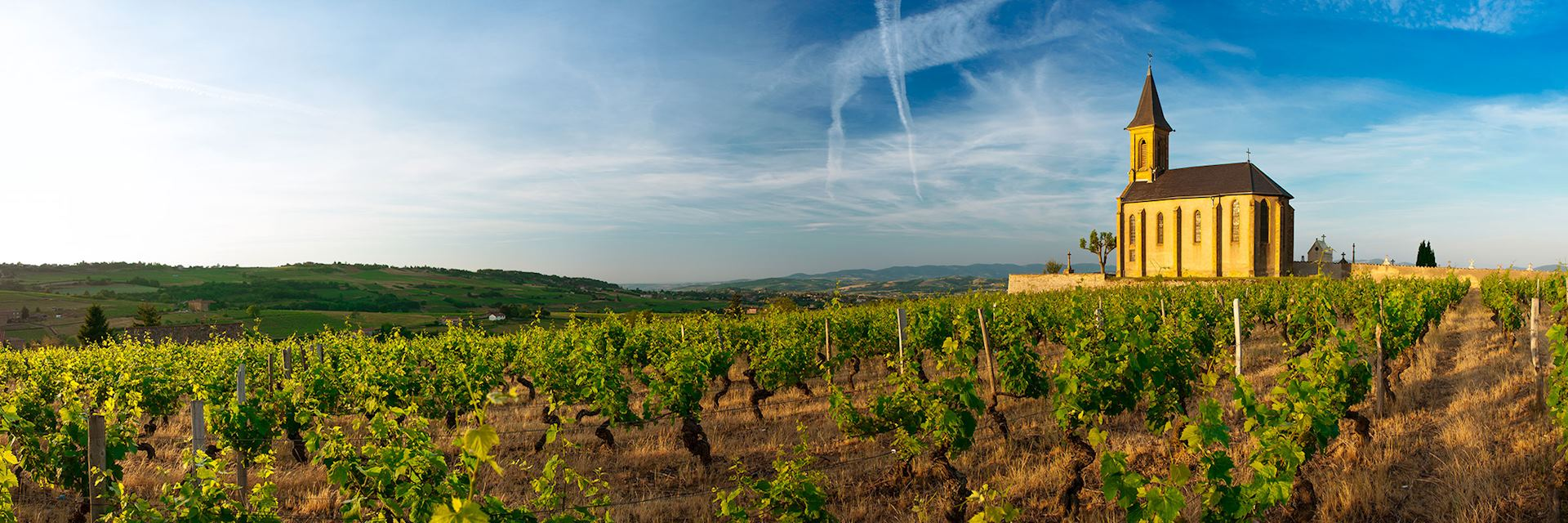 Church and vineyards of Saint Laurent d'Oingt, Beaujolais, France