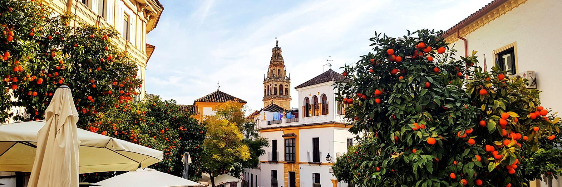 Visit Seville, Spain