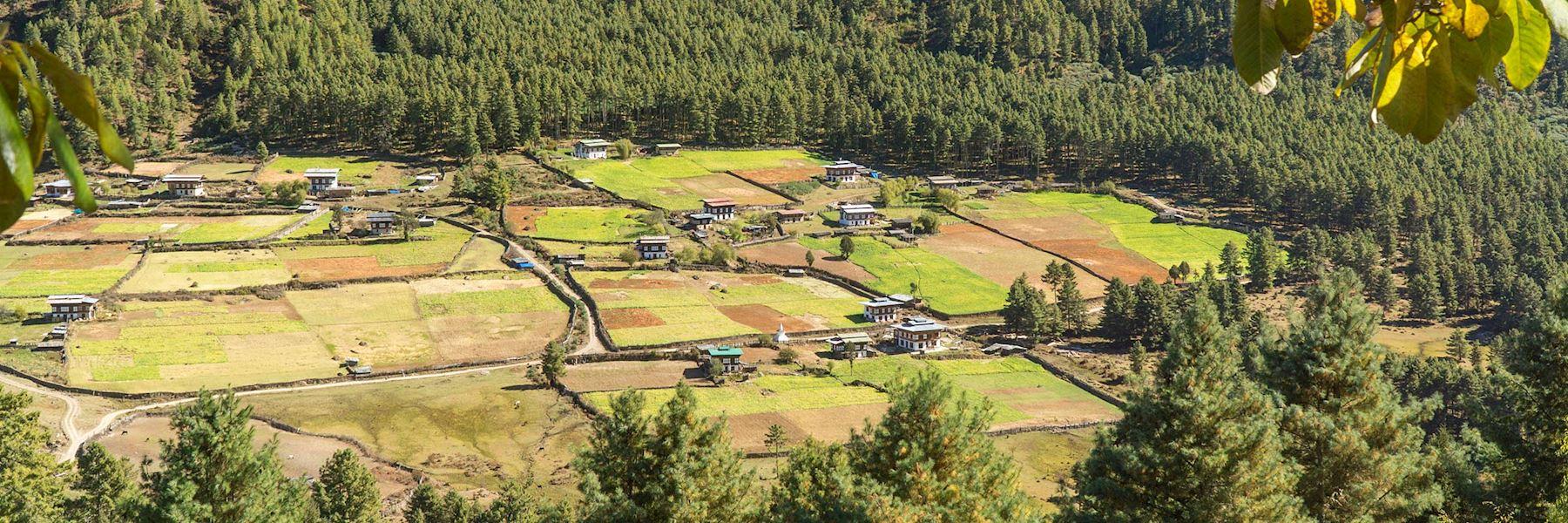 Visit Phobjikha Valley, Bhutan