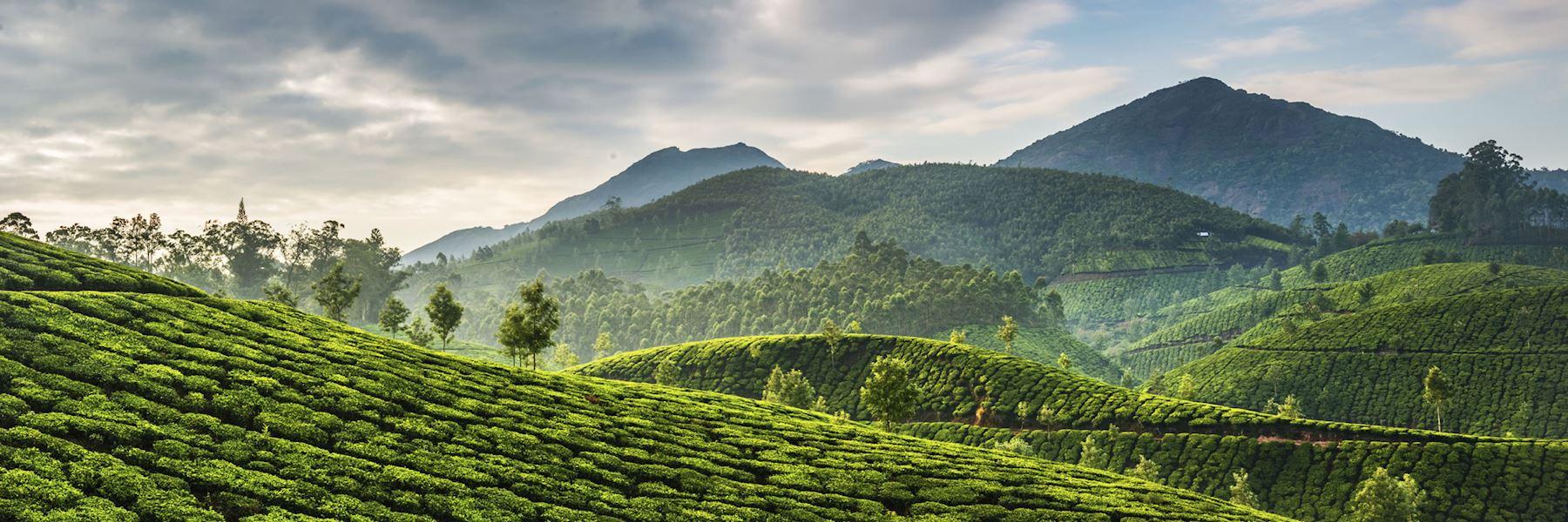 Kerala Tour Travel Planner