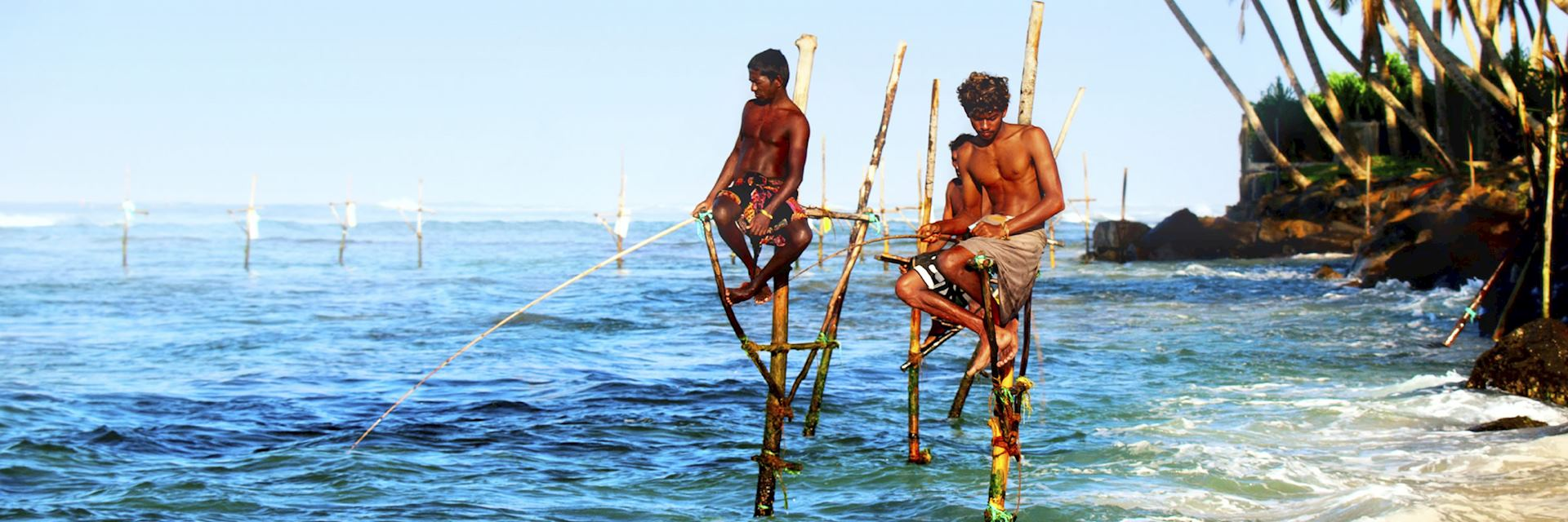 Stilt fishermen in Galle