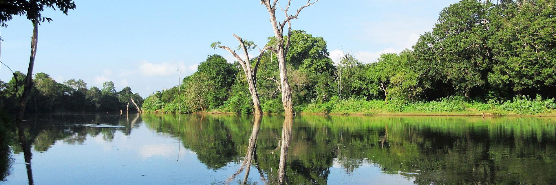 River in Uda Walawe National Park