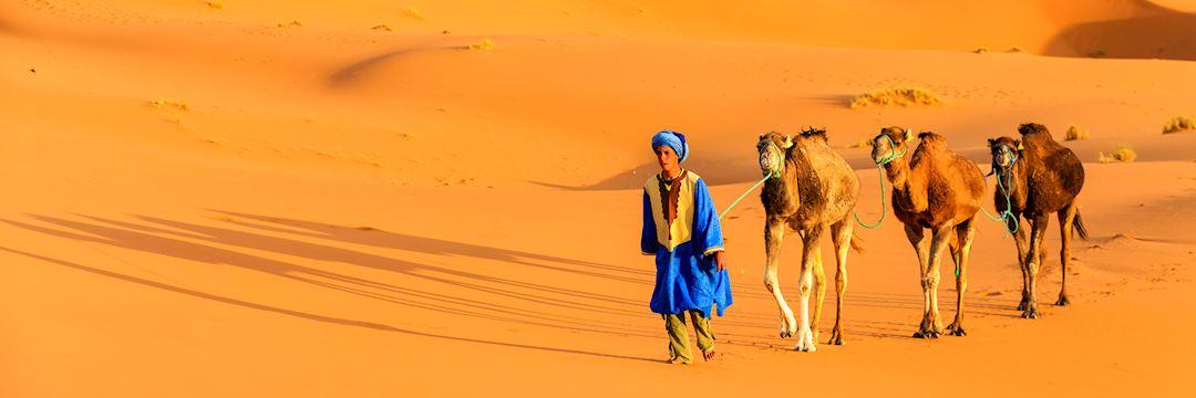 Berber caravan