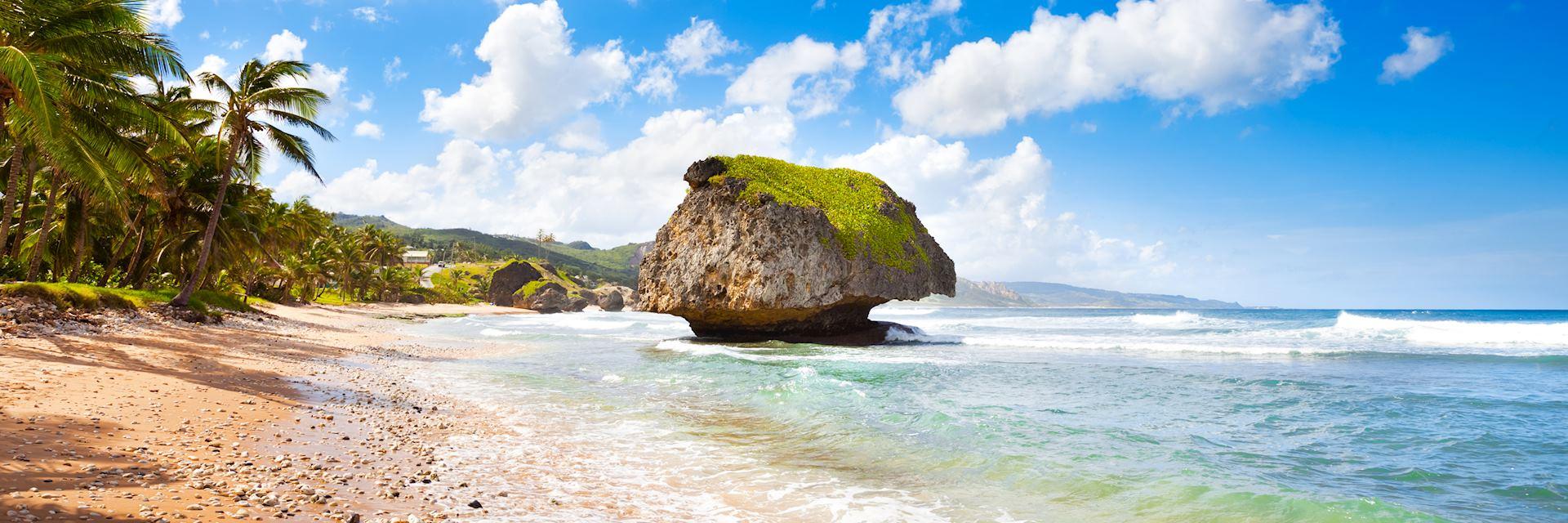 Bathsheba, East coast of Barbados