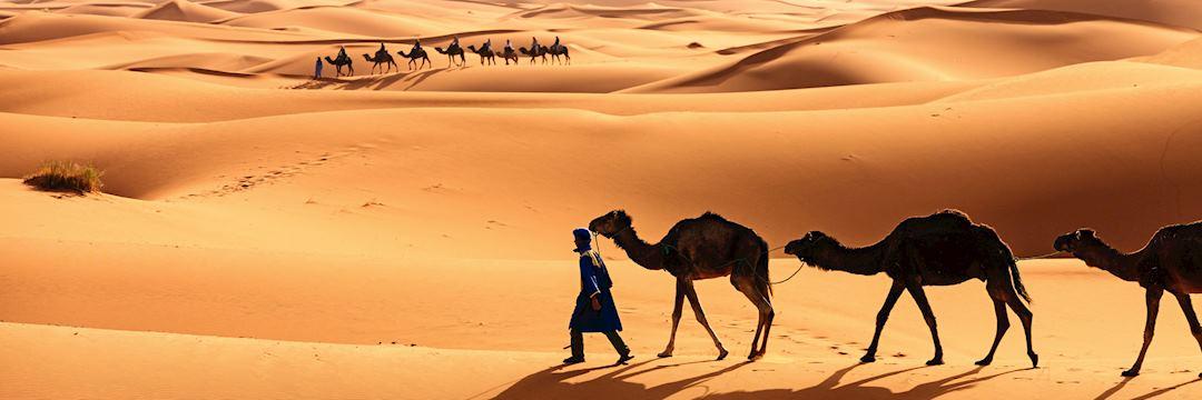 Tuareg camel train in the Western Sahara Desert