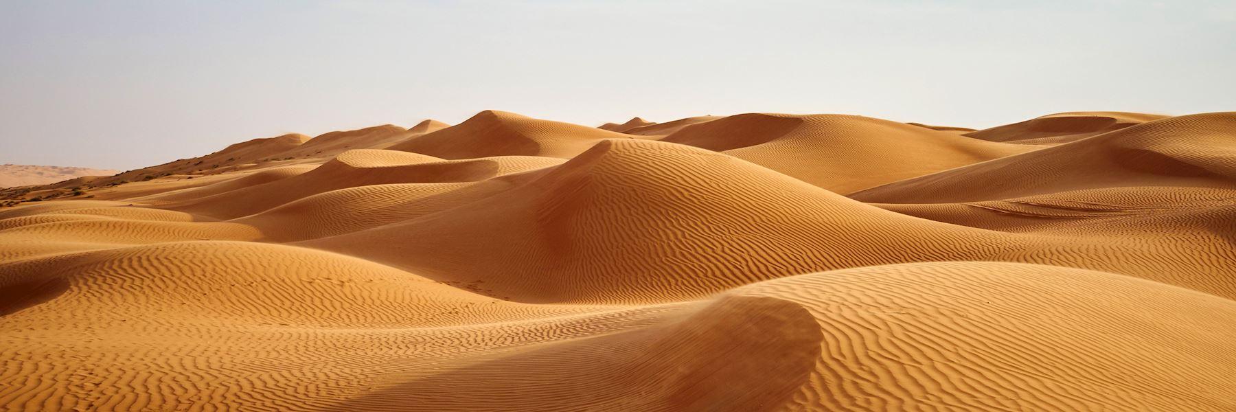 Visit the Wahiba Sands, Oman