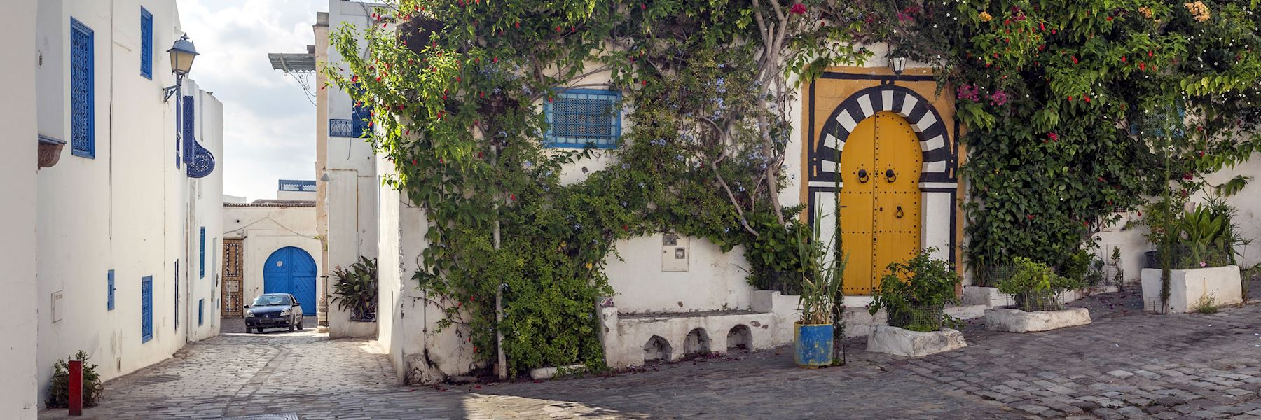 Visit Sidi Bou Said, Tunisia