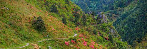 Huihang ancient hiking trail