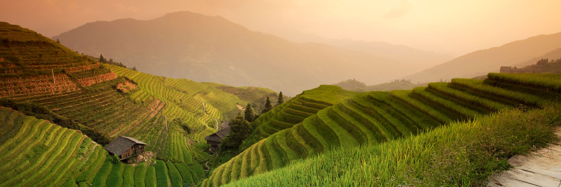 Rice terraces in Longji