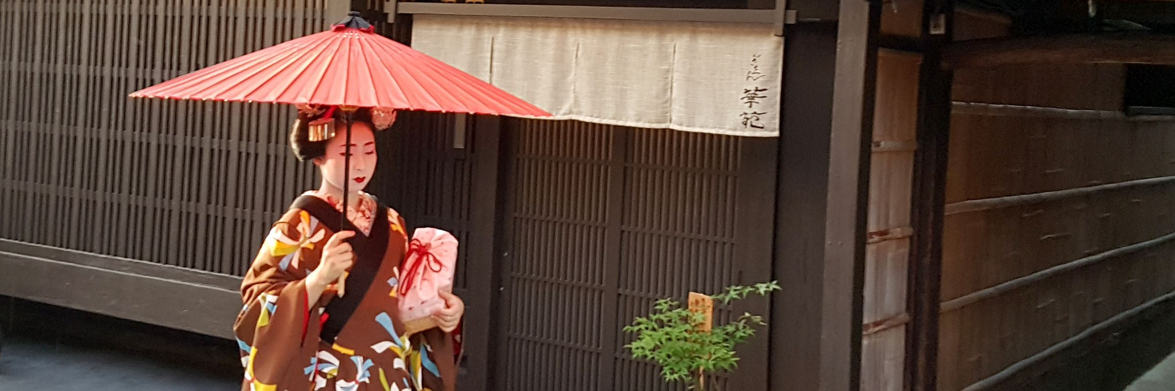 Geisha in the Gion district, Kyoto