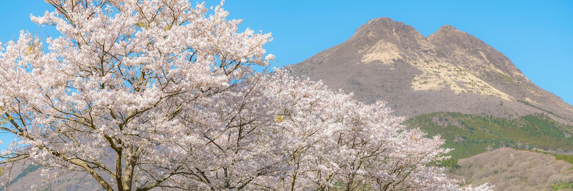 Mount Yufudake