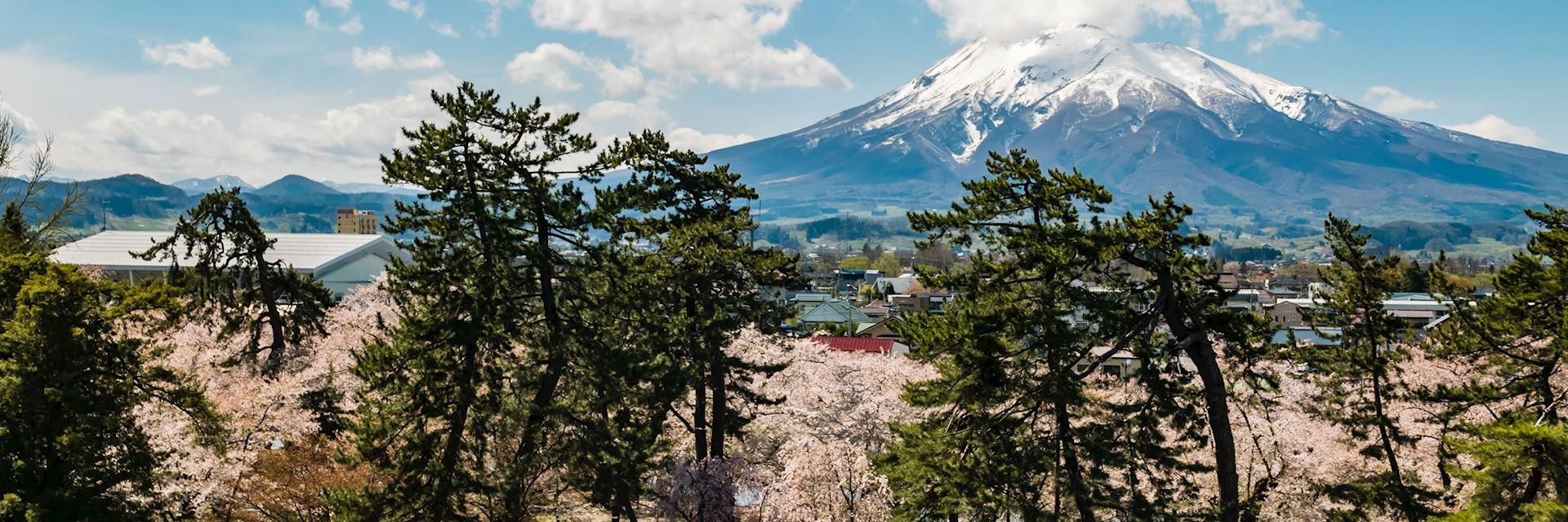 Mount Iwaki, Tohoku