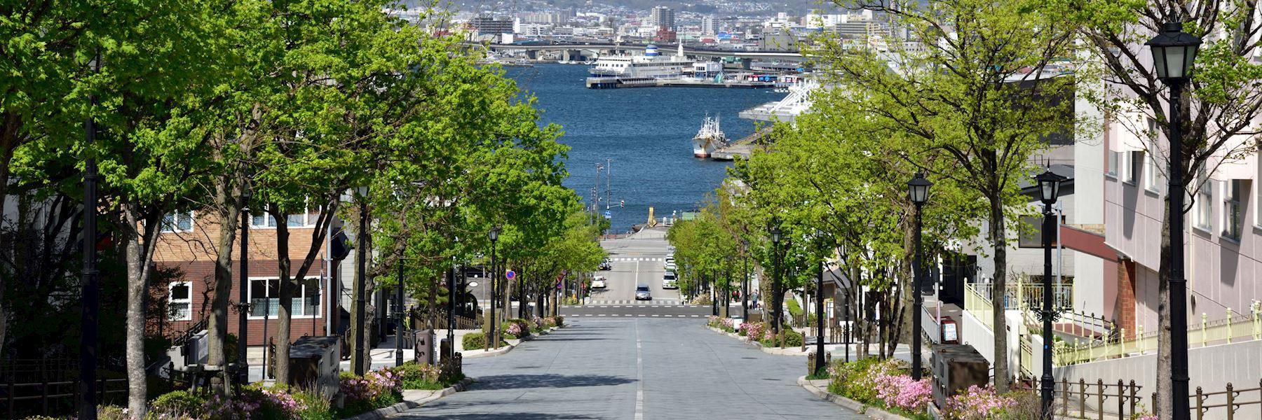 Visit Hakodate, Japan