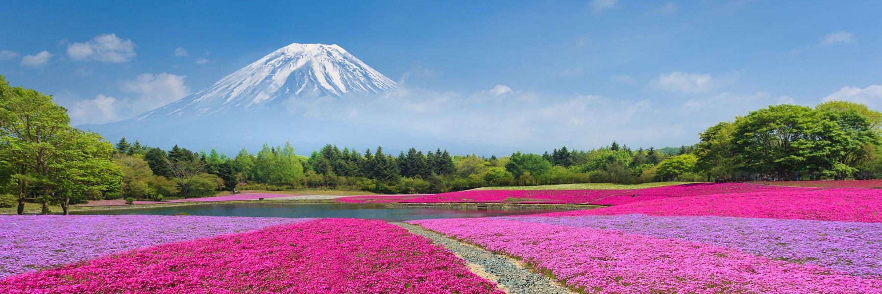 Visit Hakone & Mount Fuji, Japan