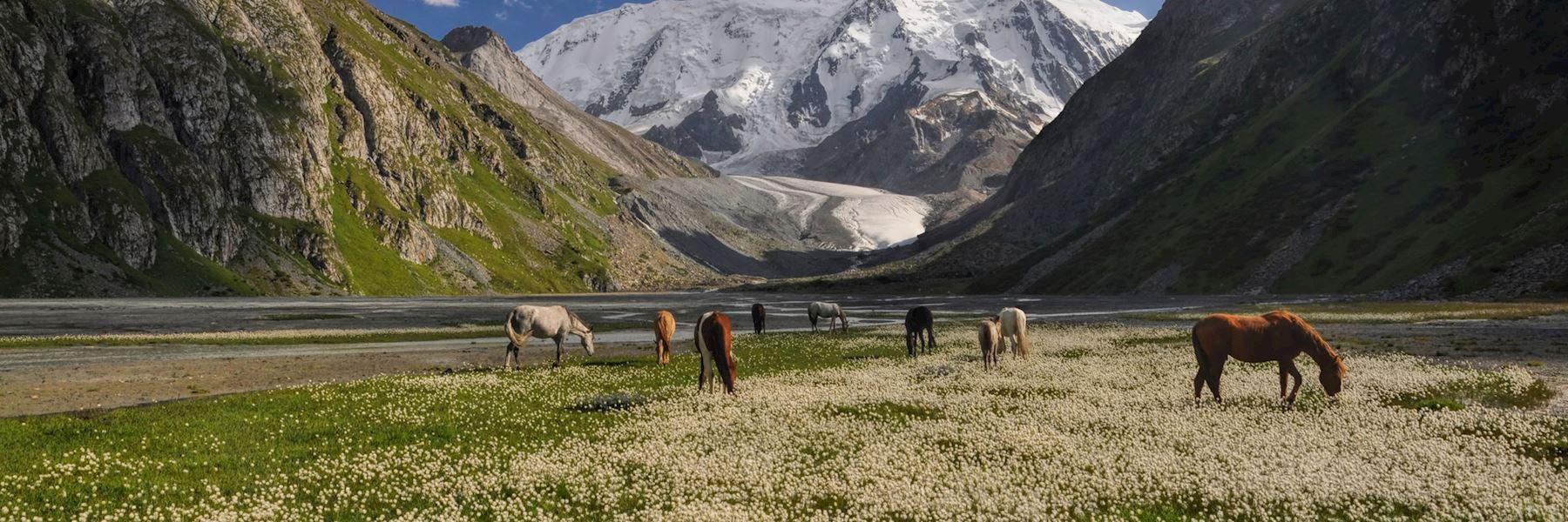 Kyrgyzstan travel guides
