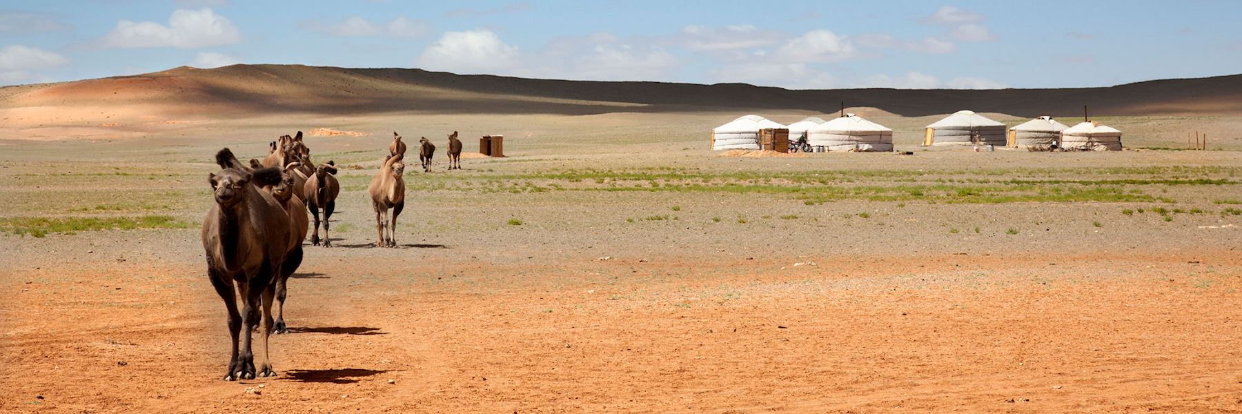 Mongolia holidays  2019 & 2020