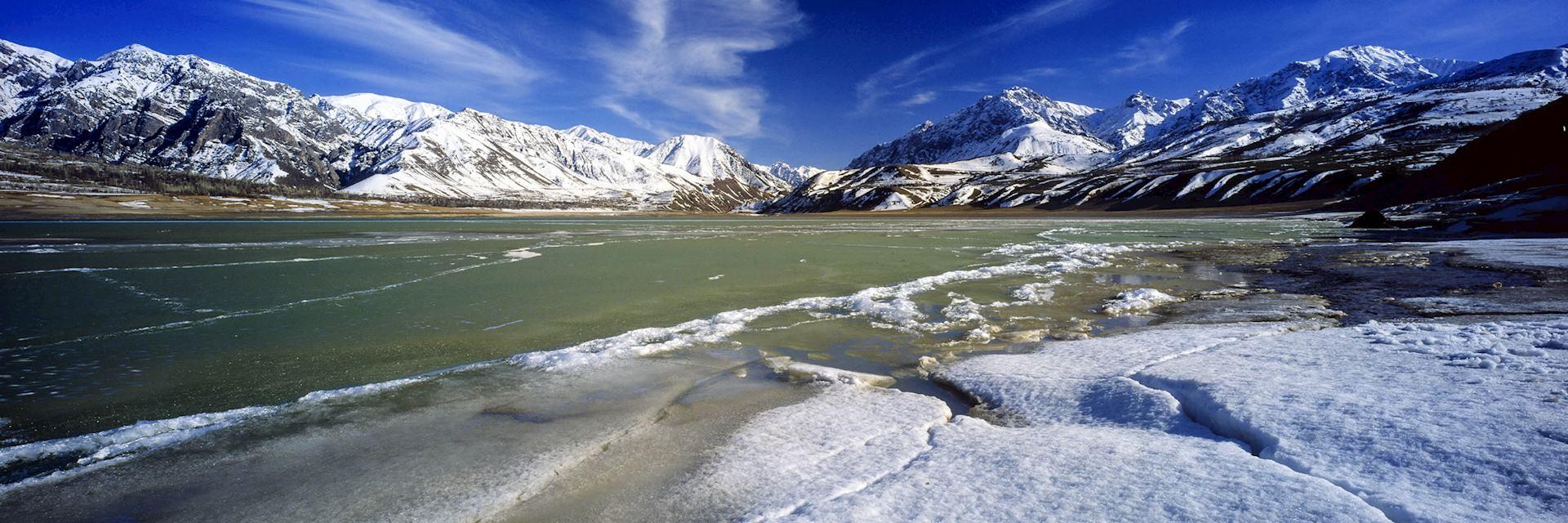 Uzbekistan spring landscape