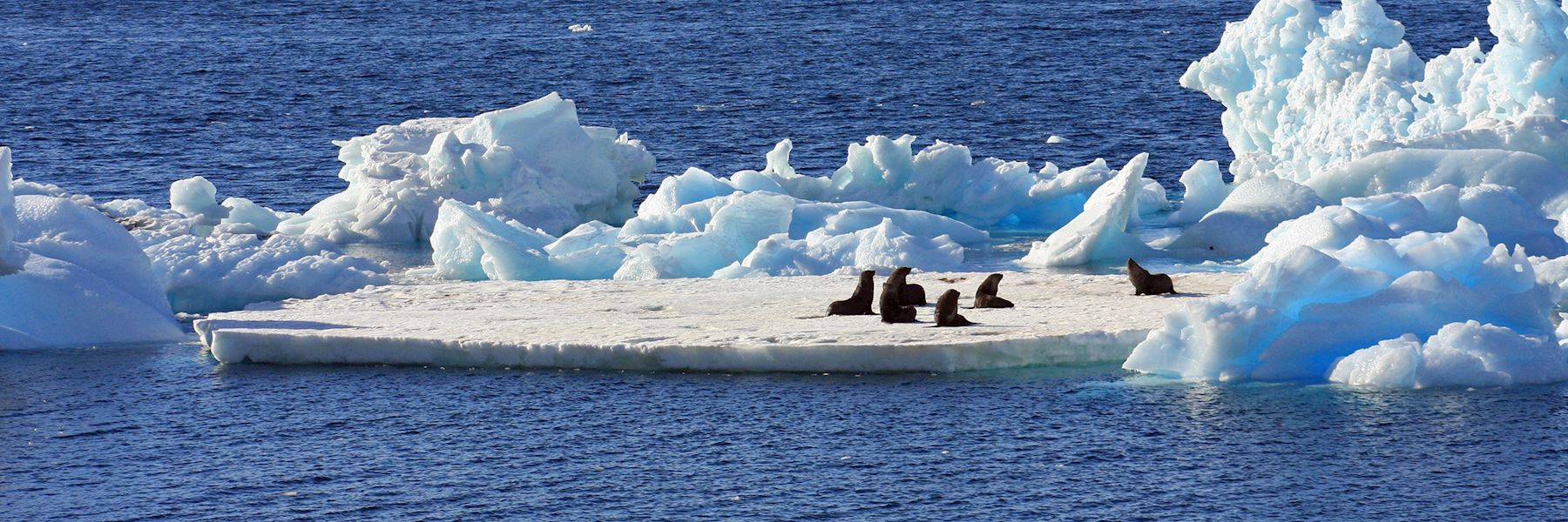 Antarctica itinerary ideas audley travel for Best places to visit in antarctica