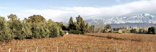 Mendoza Province in Argentina in Autumn
