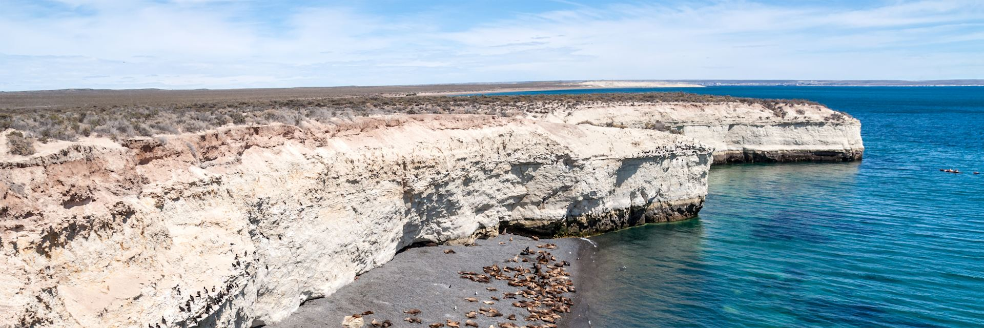 Sea lions on a beach near Puerto Madryn