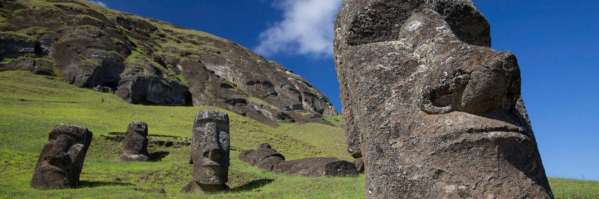 Some of the moai that didn't make it to their coastal platforms