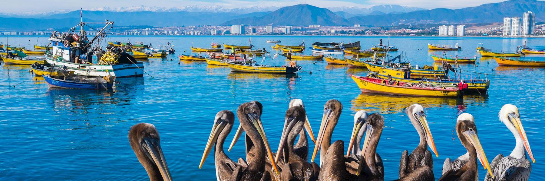 Visit La Serena & The Elqui Valley, Chile