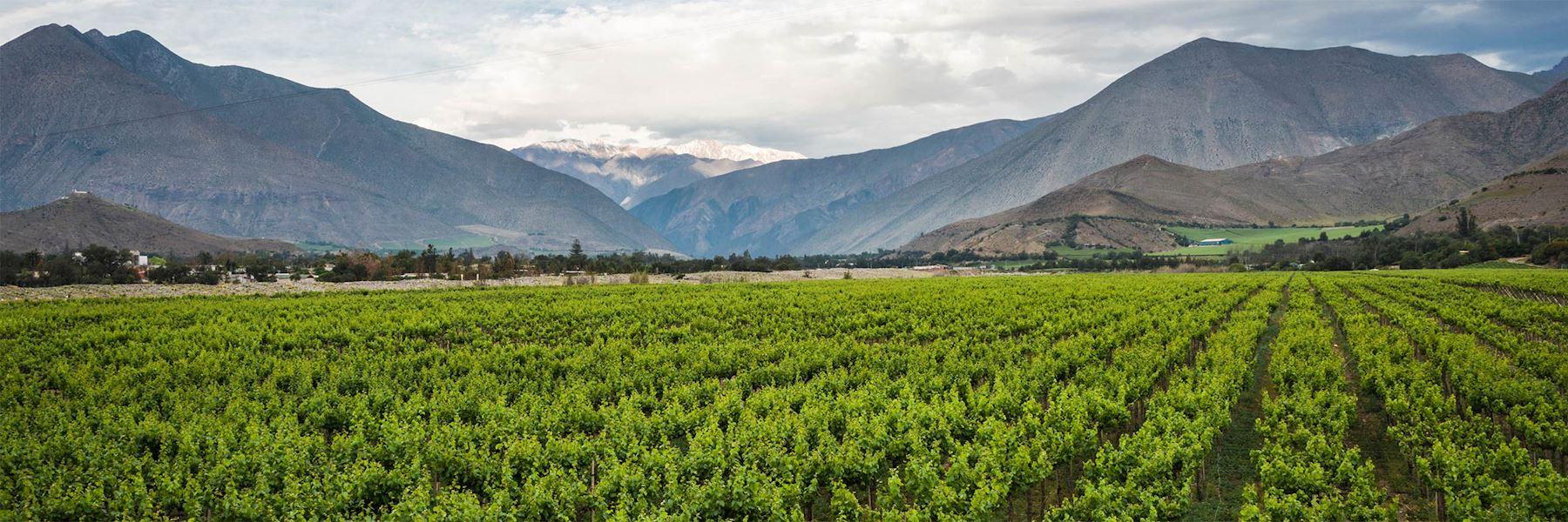 Visit Elqui Valley, Chile