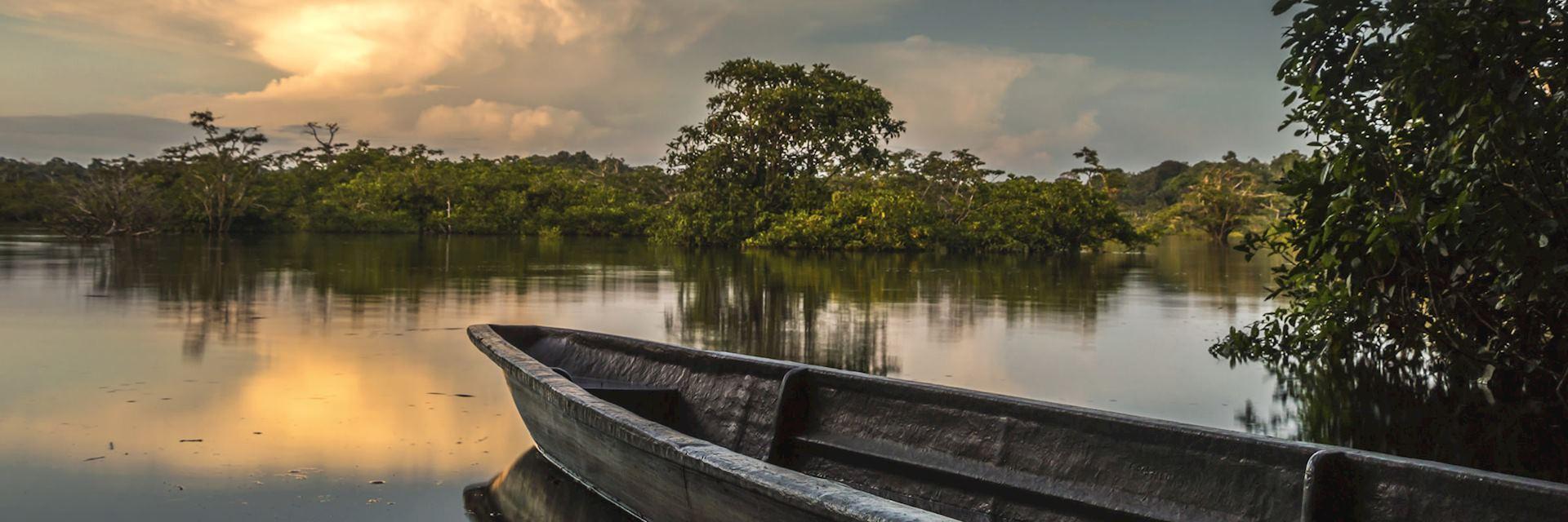 The Amazonian rainforest in Ecuador