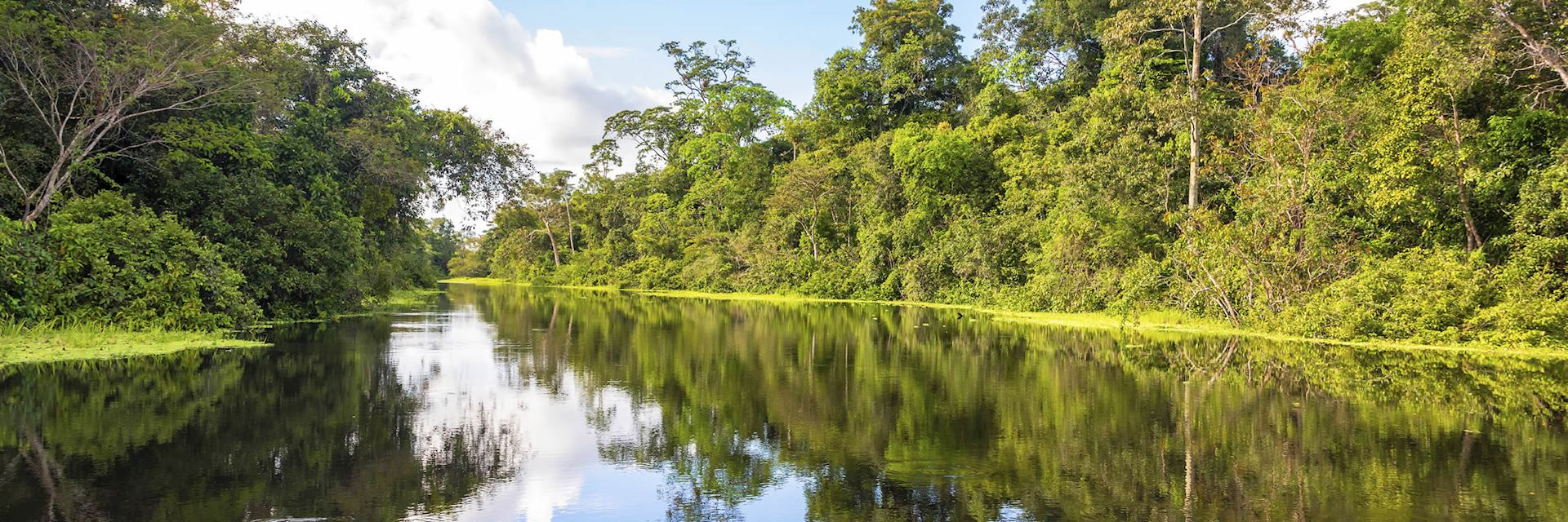 The Peruvian Amazon