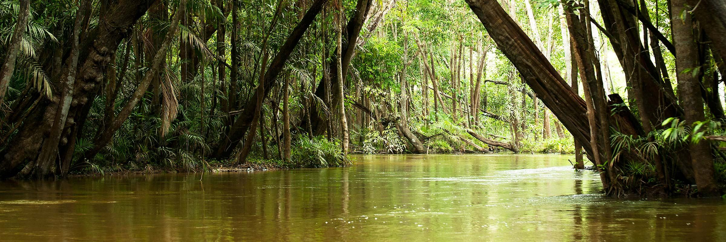 Where To Go In The Amazon Travel Guide Audley Travel