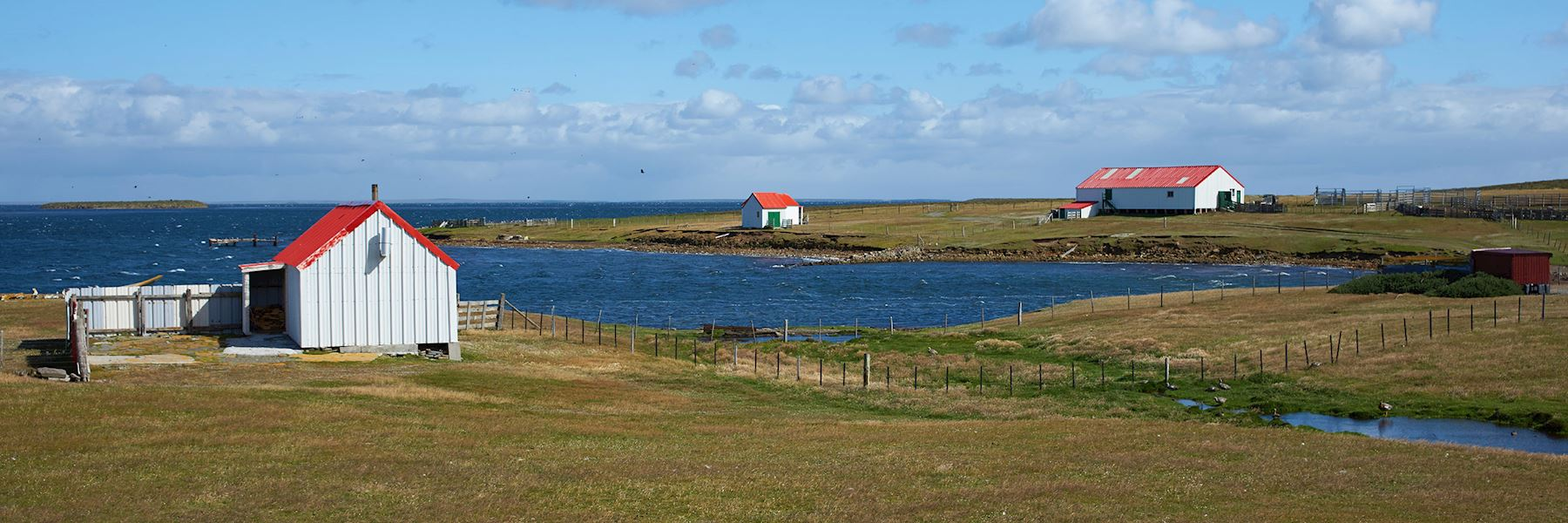 Places to visit in the Falkland Islands