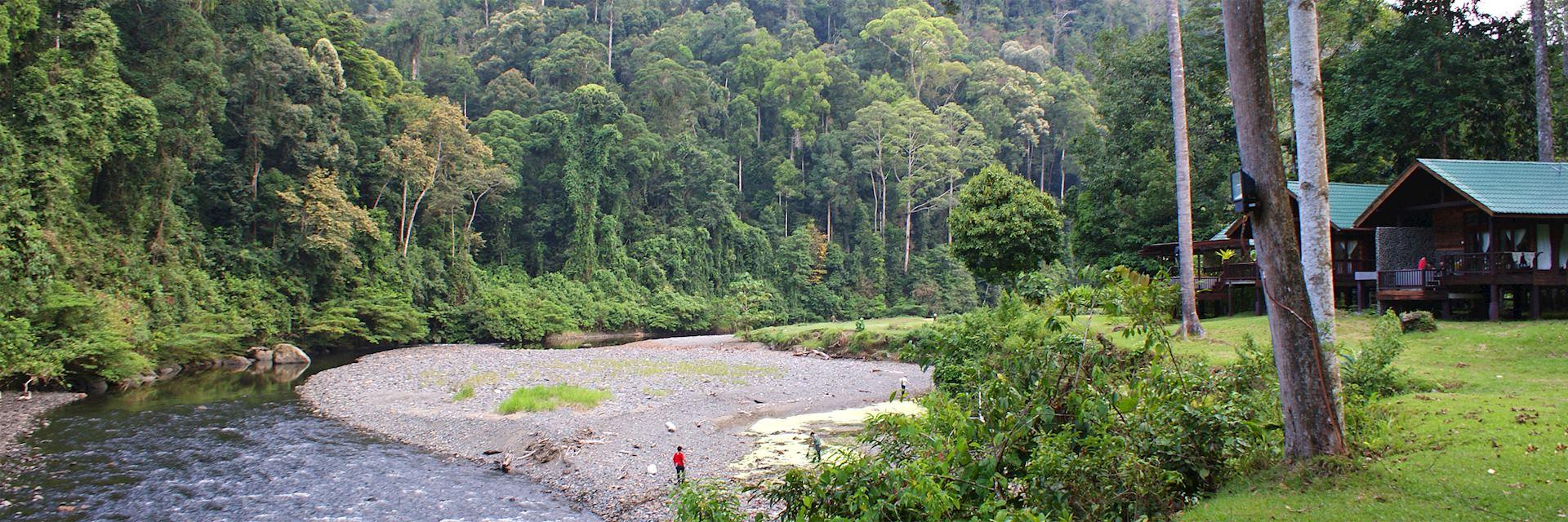 Borneo Rainforest Lodge in the Danum Valley