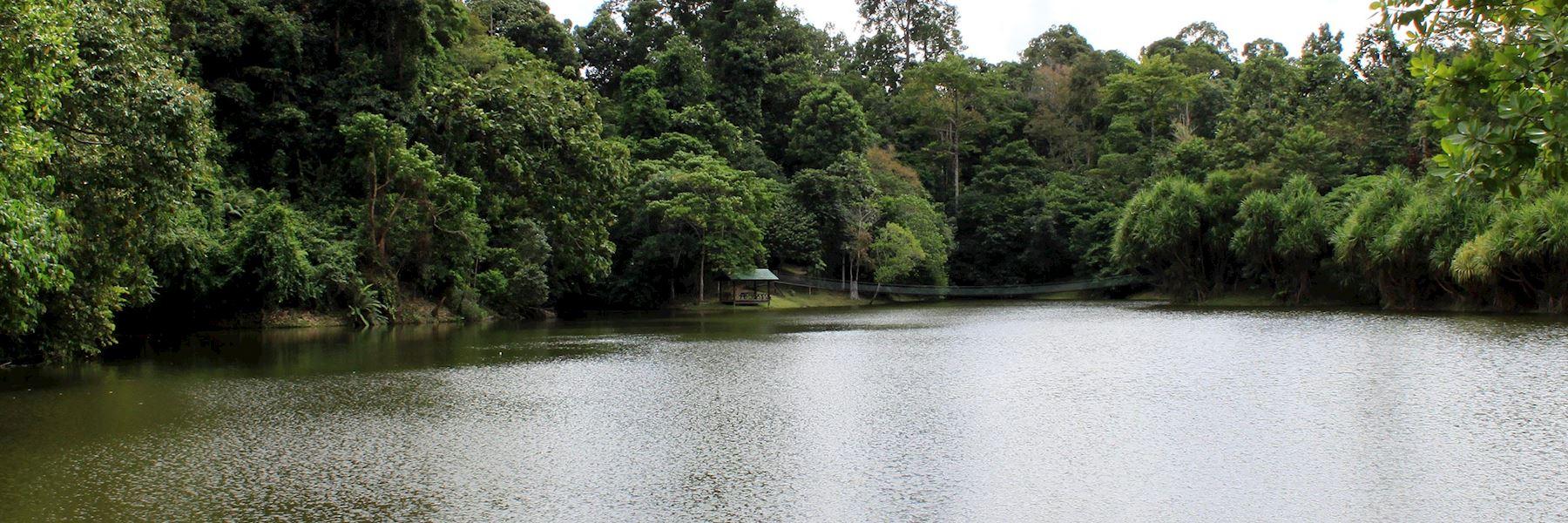 Visit Sandakan, Borneo