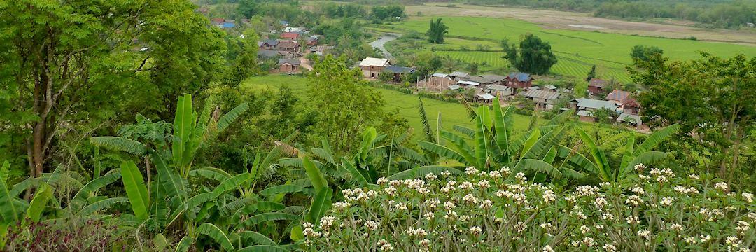 Akha minority village, Luang Nam Tha, Laos