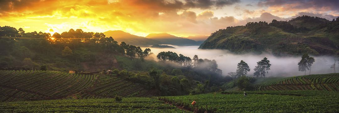 Sunrise over the Angkhang Nature Resort