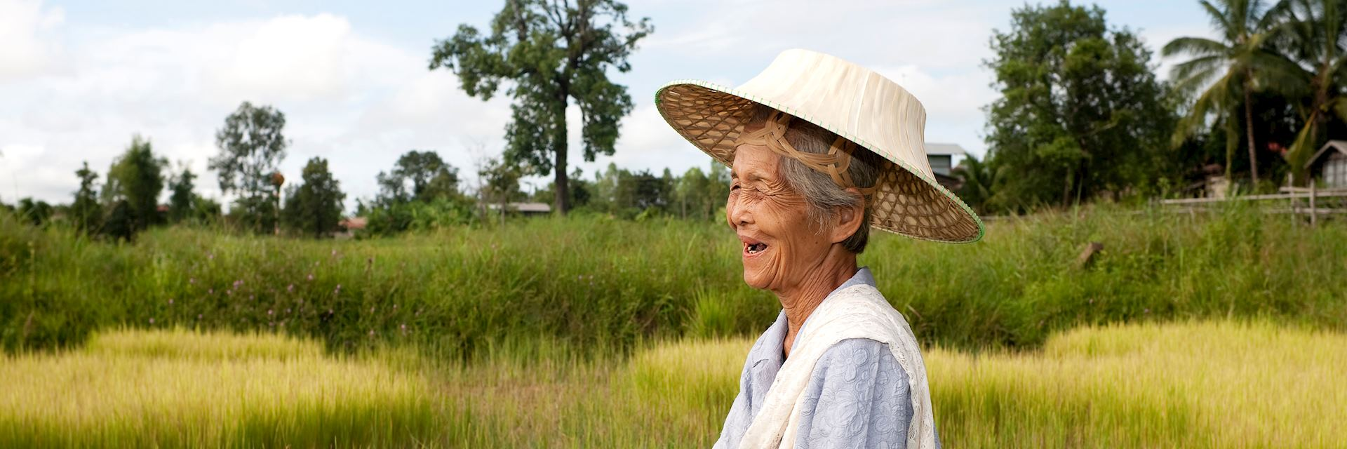 local woman working in a rice field, Thailand