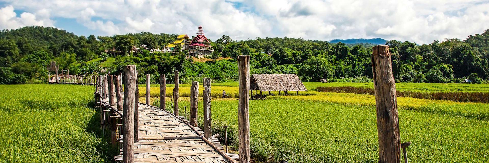 Rice field in Mae Hong Son