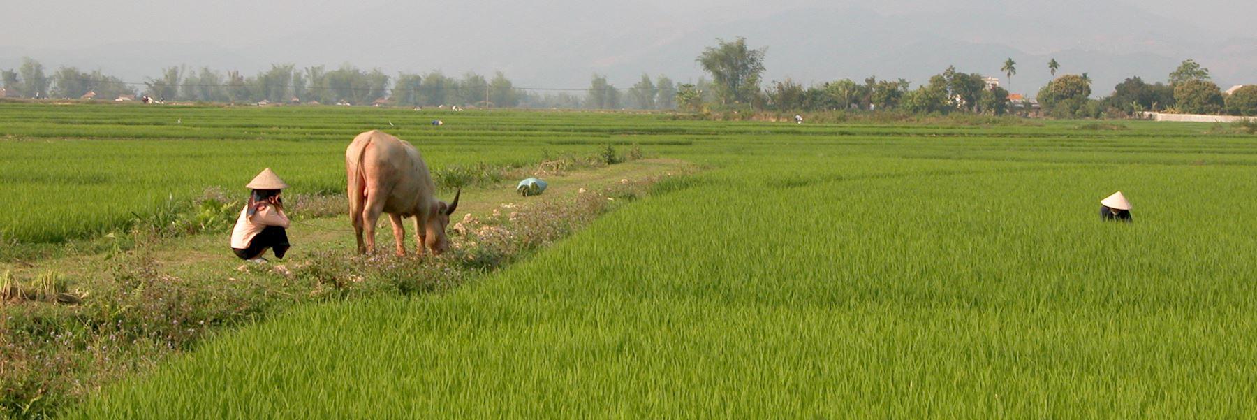 Visit Mai Chau, Vietnam